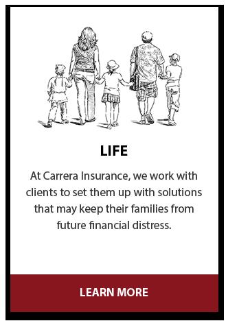 Life Insurance Provider